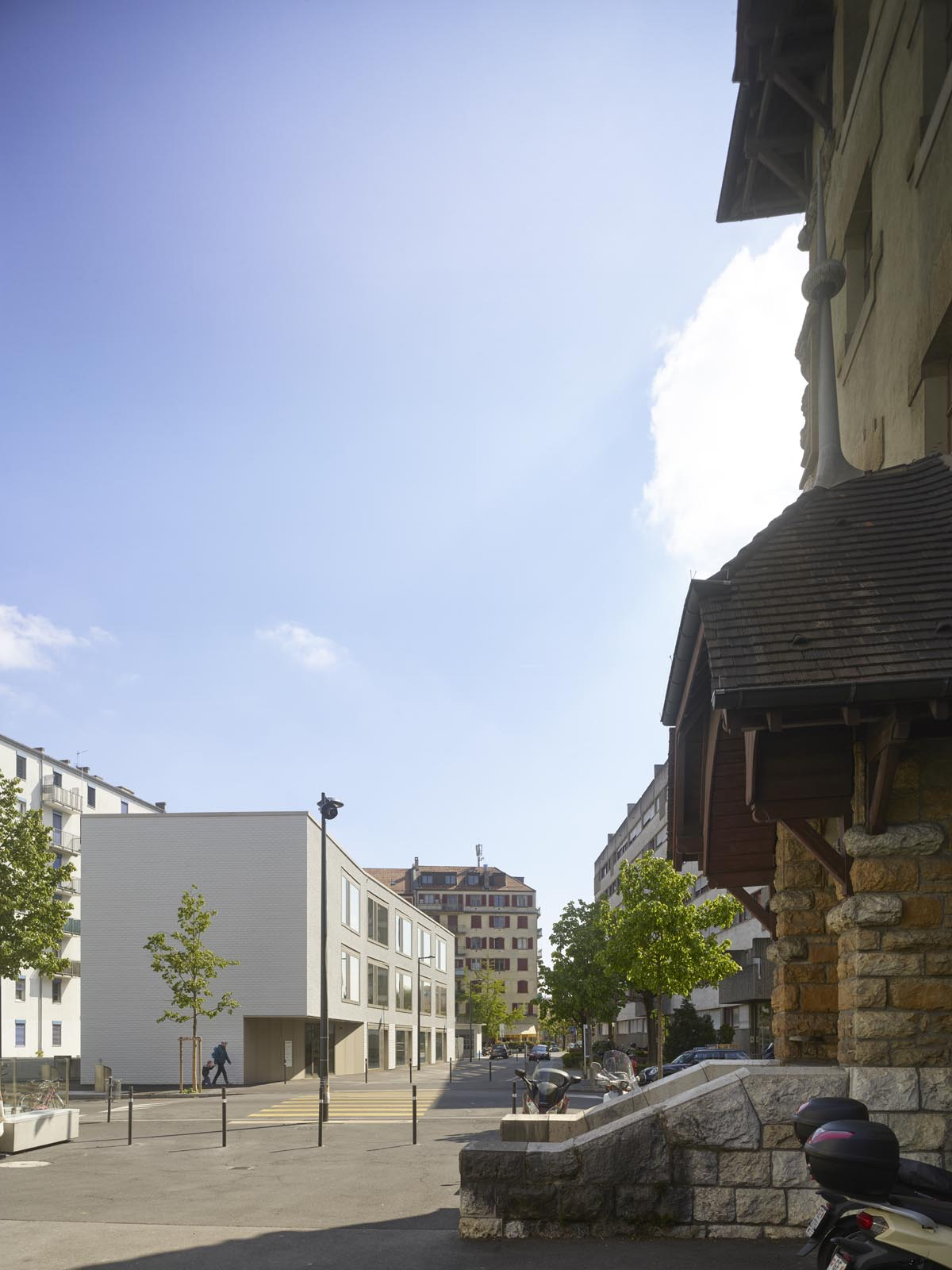 triangle des pervenches carouge